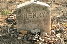 Henry David Thoreau, Sleepy Hollow, Concord, MA
