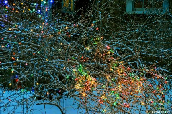January Lights