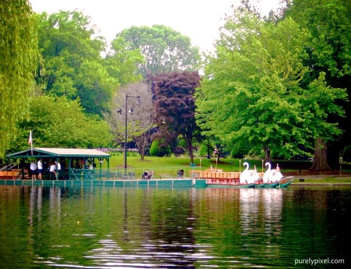 Boston Public Garden, Swan Boats