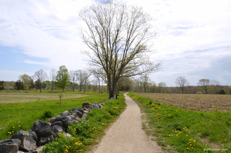 Trail through Farmland