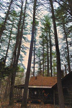 cabin_2